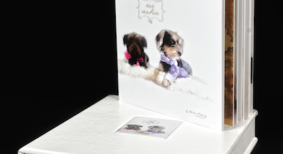 TotFoto – Album Big Book
