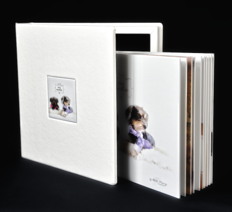 TotFoto - Album Big Book